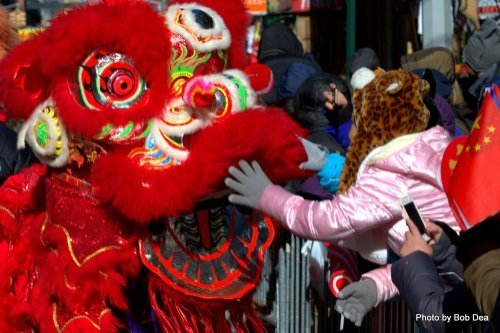 NYC Chinatown Lunar New Year Parade: A child greets the lion dancer