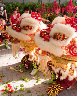 Chinese lions spreading the lettuce