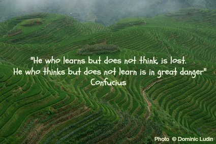 He who learns but does not think, is lost.  He who thinks but does not learn is in great danger - Confucius