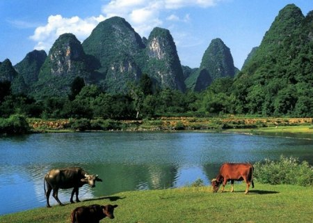 Countryside and Mountains along  the Li River