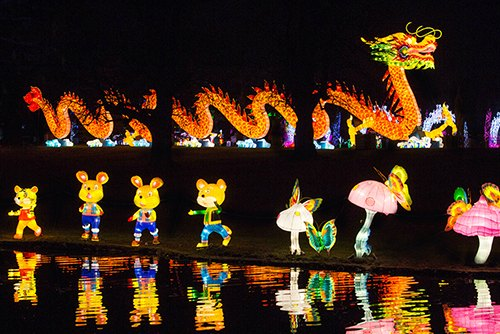 Magic Lantern Festival: Dragon