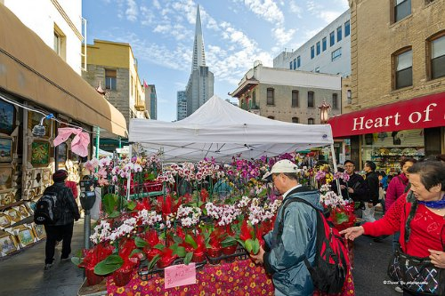 CNY Flower Market Fair in San Francisco