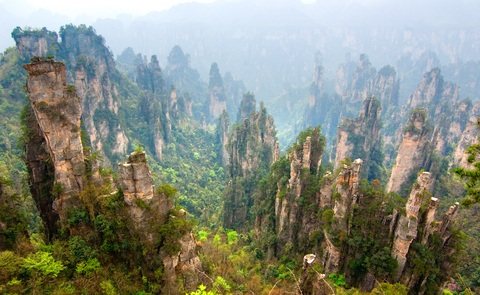 Zhangjiajie Stone Forest China