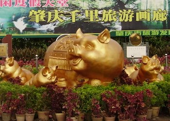 Chinese New Year Animals: Pig