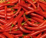 Ingredientes y Condimentos Chinos: Chiles/Ajies