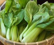 Chinese Food - Vegetables: Bak Choy
