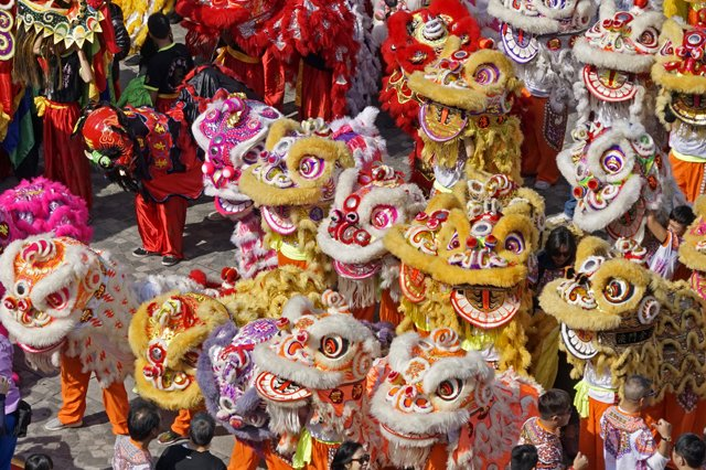 Southern Chinese Lions