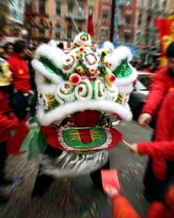 chinese lion dancer