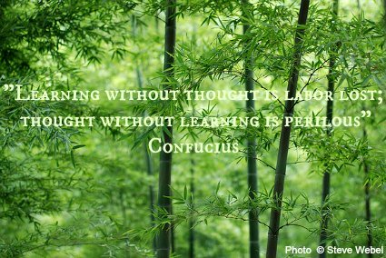 Learning without thought is labor lost; thought without learning is perilous - Confucius
