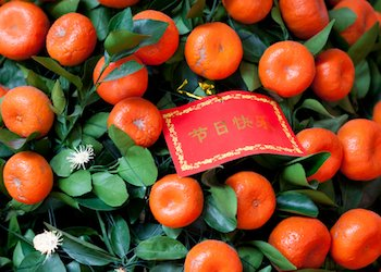 Red Envelope and Mandarin Tree
