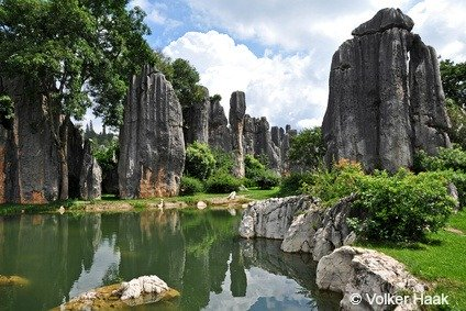 Shilin Stone Forest and Pools