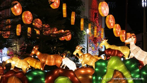 Lanterns illuminate Singapores Streets during the annual Chinese New Year Light Up