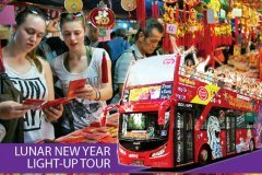 Lunar New Year Light-up Tour in Singapore