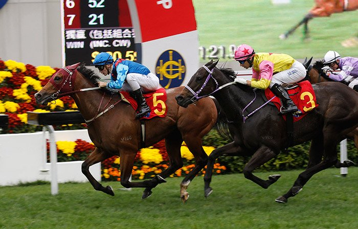 Top 10 Hong Kong Attractions: Happy Valley Horse Races