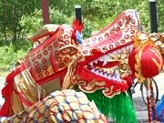 Chinese New Year Traditions: The Dragon Parade