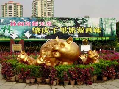 Year of the Pig Displays
