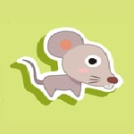 Year of the Rat Baby